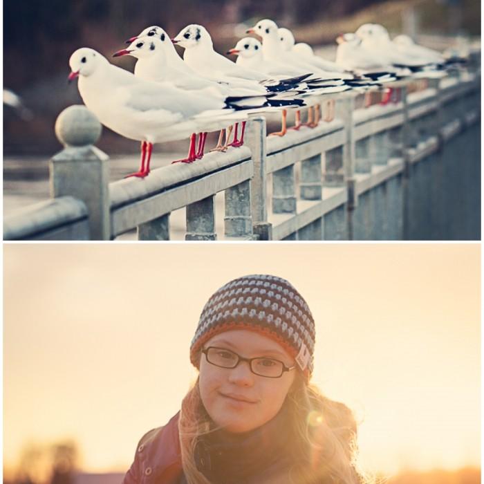 2012-12-30_0001.jpg