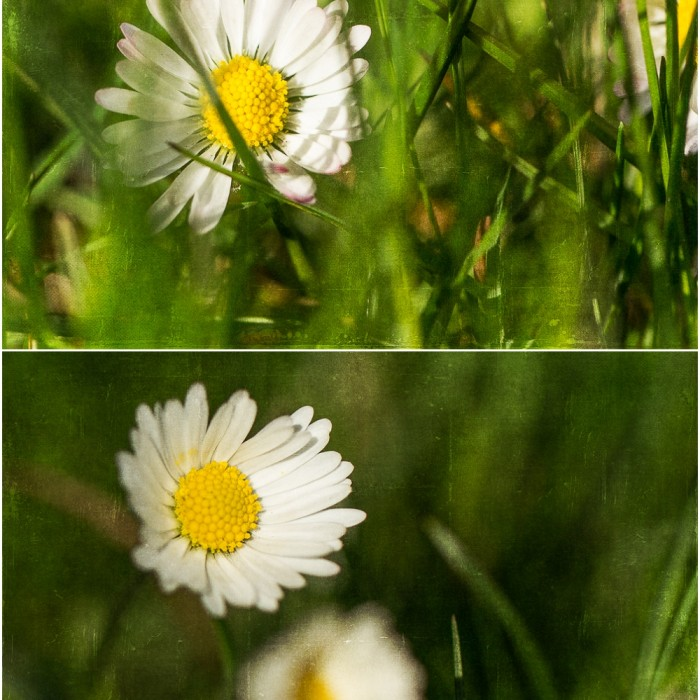 2013-04-21_0002.jpg