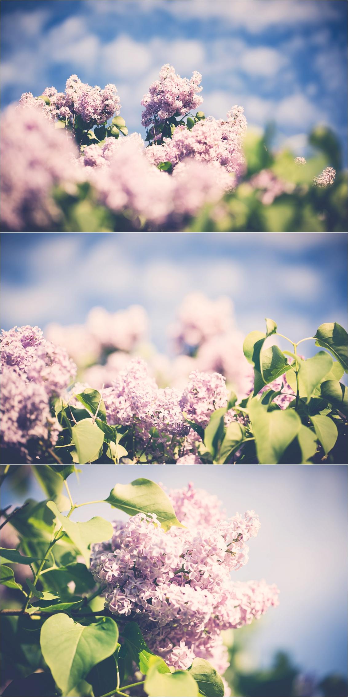 2015-05-22_0004.jpg